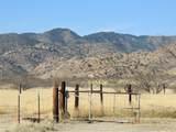 778 Pearce Road - Photo 45