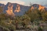 14161 Giant Saguaro Place - Photo 12
