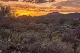 14161 Giant Saguaro Place - Photo 14