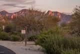 14161 Giant Saguaro Place - Photo 15