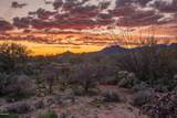 14161 Giant Saguaro Place - Photo 16