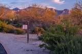 14161 Giant Saguaro Place - Photo 2