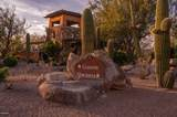 14161 Giant Saguaro Place - Photo 4