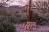 14161 Giant Saguaro Place - Photo 6