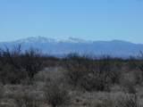 Dinwiddie Ranch Road - Photo 12