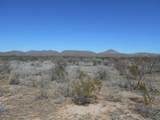 Dinwiddie Ranch Road - Photo 2