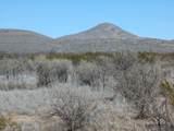 Dinwiddie Ranch Road - Photo 3