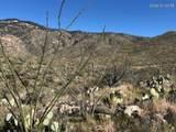 18760 Cactus Hill Road - Photo 11