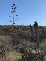 18760 Cactus Hill Road - Photo 13