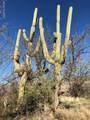 18760 Cactus Hill Road - Photo 15