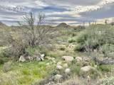 1444 Tortolita Mountain Circle - Photo 3