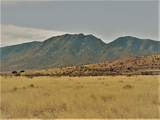 TBD March St W Of Desert - Photo 10