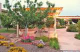 60674 Arroyo Grande Drive - Photo 38
