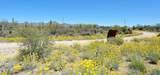 4321 Thunder Ranch Place - Photo 42