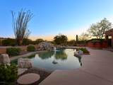 16560 Saguaro View Lane - Photo 18