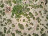 16560 Saguaro View Lane - Photo 46