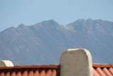 1020 Calle Del Regalo - Photo 45