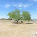 11436 Paseo Alejandro - Photo 12