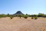 11426 Desert Wren Drive - Photo 1