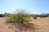 11426 Desert Wren Drive - Photo 4