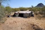 11426 Desert Wren Drive - Photo 5