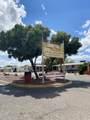3565 Mango Drive - Photo 32