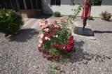 160 Santa Chalice Drive - Photo 34