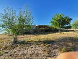 25212 Old Dusty Trail - Photo 40