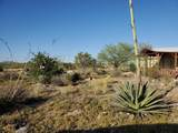 25212 Old Dusty Trail - Photo 47