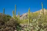 6655 Canyon Crest Drive - Photo 28