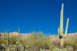 6655 Canyon Crest Drive - Photo 29
