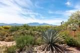 1256 Via Alamos - Photo 43