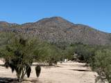 0 Wild Burro Road - Photo 14