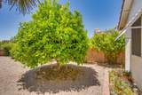 1041 Rio Guaymas - Photo 47