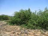 163 Desert Senna Trail - Photo 1