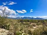 14686 Granite Peak Place - Photo 2