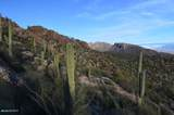7292 Stone Canyon Drive - Photo 11