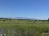 5 acres Cottontail (East 5 Acres) Lane - Photo 10