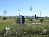 10 acres Cottontail (10 Acres) Lane - Photo 4
