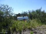 10 acres Cottontail (10 Acres) Lane - Photo 5