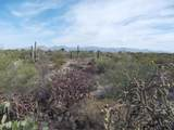 11150 Pantano Trail - Photo 1