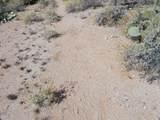 11150 Pantano Trail - Photo 14
