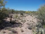 11150 Pantano Trail - Photo 19