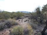 11150 Pantano Trail - Photo 2