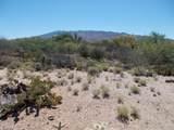 11150 Pantano Trail - Photo 20