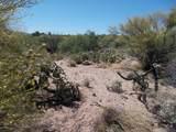 11150 Pantano Trail - Photo 21