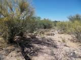 11150 Pantano Trail - Photo 23