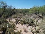11150 Pantano Trail - Photo 24