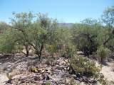 11150 Pantano Trail - Photo 25