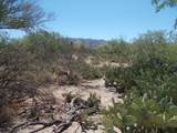 11150 Pantano Trail - Photo 28